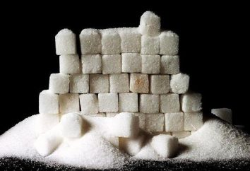 ¿Cuál debe ser la alimentación cuando el exceso de azúcar en la sangre?