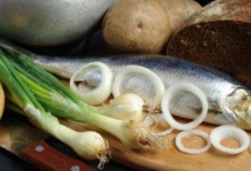 Qual è il valore calorico di aringhe in piatti diversi? A seconda del metodo di preparazione