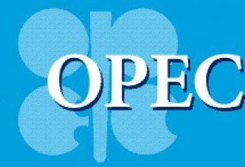 OPEP: decifrar e organização de funções. Lista de países – membros da OPEP
