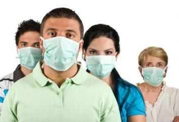 Influenza aviária: sintomas em humanos. Tratamento, prevenção, primeiros sinais