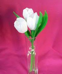 Krepppapier Blumen von Tulpen und Krokusse