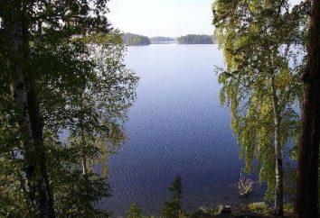 """Appoggiare sui laghi di Chelyabinsk: prezzi, recensioni, database e riposo """"selvaggio"""""""