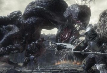 scale di titanio nel Dark Souls 3: descrizione delle risorse