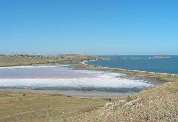 Lake Chokrakskoe (Crimea): onde é, como chegar lá? A lama do lago Chokrak