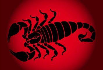 Scorpio-Rat: la donna come un rappresentante della combinazione zodiacale