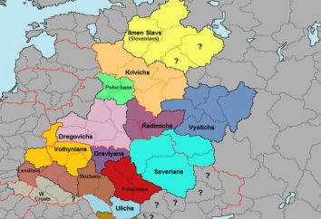 La formazione di slava afferma: i termini, le condizioni e le ragioni. I primi Stati slavi