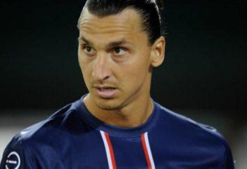 Zlatan Ibrahimović: biografia e vida pessoal de um jogador de futebol (foto)