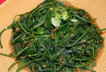 Wie grüne Bohnen kochen?