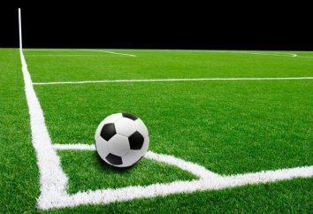 Campo de césped artificial para la última generación de fútbol