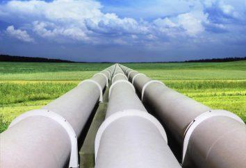 """Il gasdotto """"Blue Stream"""": fatti interessanti"""