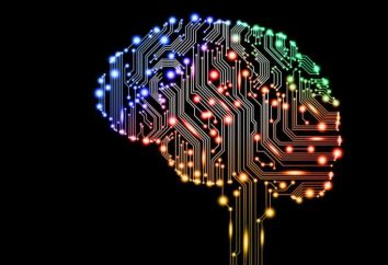 """Los investigadores """"enseñaron"""" inteligencia artificial para crear nuevos colores"""