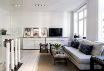 Skandinavischer Stil in der Wohnung: Designmerkmale, Kombinationen und interessante Ideen