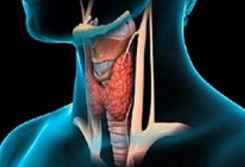 Hypothyroid Koma: wie Notfallversorgung zur Verfügung zu stellen?