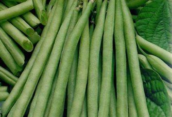Les haricots: comment congeler, puis utiliser