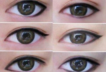 La flecha en el ojo: especies para diferentes formas del ojo