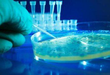 métodos microbiológicos para estudo de água, solo e ar