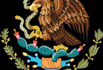 symbole narodowe Meksyku. Hymn, flaga i płaszcz Meksyk