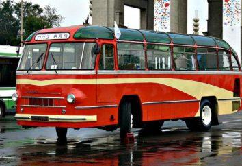 """Laz-697 """"turystyczny"""": specyfikacje techniczne. autobusów"""