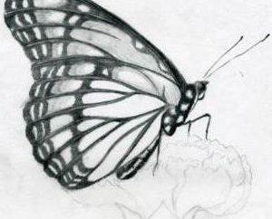 Jak przenieść rysunek z papieru do papieru i innych powierzchni