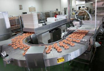 Merkmale der Vorrichtung zur Herstellung von Donuts. Was ist die beste Donut Maschine