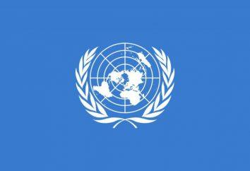 Bandera de la Tierra. La variedad de opciones