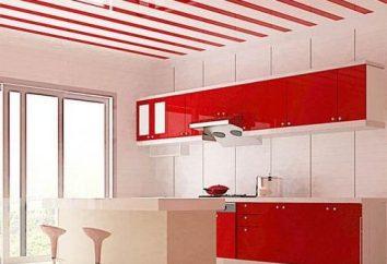 Decoração Cozinha: painéis de plástico ou azulejos