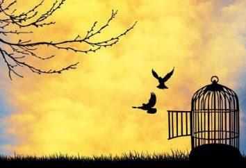 Jak puścić sytuacji: praktyczne wskazówki i porady psychologa