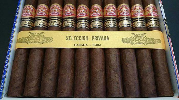 beste zigarren kuba