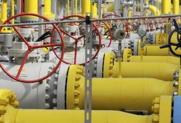 stazione di distribuzione del gas automatizzato