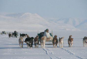 Die indigenen Völker der Arktis. Welche Menschen sind die Ureinwohner der Arktis?