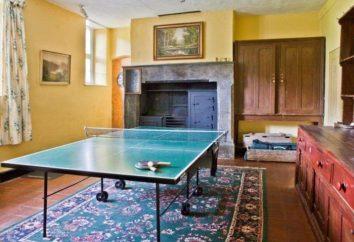 Table de ping-pong pour le jardin: l'utilisation, des lignes directrices pour le choix et l'assemblage de leur propre