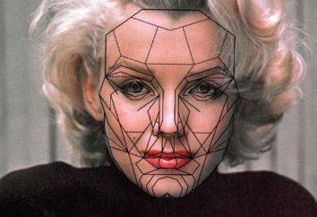 Złoty sekcja jako wyjaśnienie twarzy proporcjach kosmetycznych