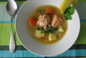 ¿Cómo se prepara la sopa suculenta de peces de color rojo?