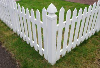 Por que o sonho de uma cerca? livro dos sonhos dirá!