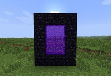 """Come creare e come aprire una porta in """"Maynkraft"""""""