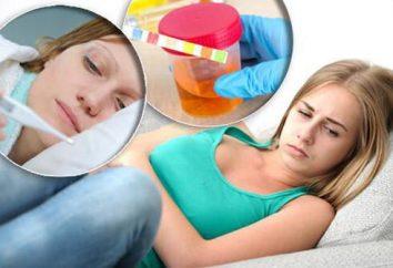 Hepatite C – descrição transportador e particularmente tratamento