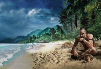 Far Cry 3 non viene salvato – che cosa fare?