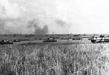 La mayor batalla de la Segunda Guerra Mundial (tanque, etc.)