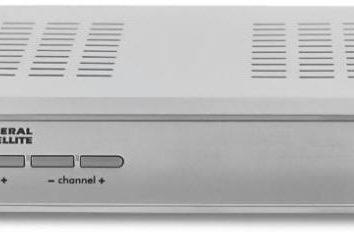 Cyfrowy odbiornik satelitarny HD GS-8306: podręcznik, przegląd modelu i opinii