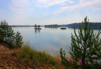 Maluksa Lake: wędkarstwo, ekoturystyka, opinie