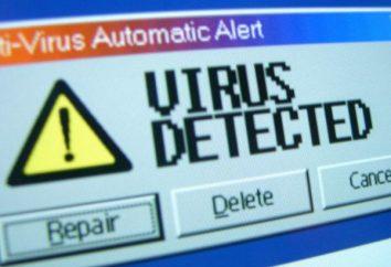 Wie das Virus von Ihrem Computer selbst zu entfernen. Wie man manuell den Virus von Ihrem Laptop entfernen
