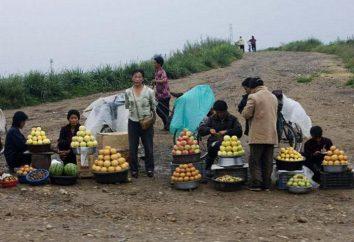 Economia della Corea del Nord: descrizione e fatti interessanti