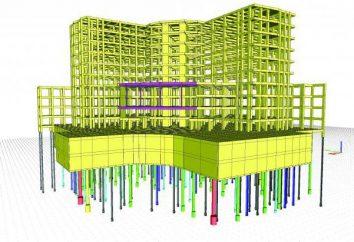 fondazioni su pali: Calcolare il numero di pali, tipi, tipi e di design