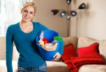 limpieza general de la casa con sus propias manos: ¿cómo empezar?