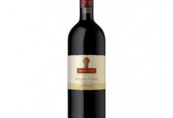 """""""Dolina Alazani"""" – wino rodzi się w sercu Kachetii"""