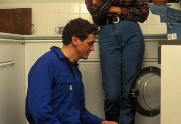 """Naprawa pralki """"Zanussiego"""" własnymi rękami. Spróbuj naprawić pralkę Zanussi"""