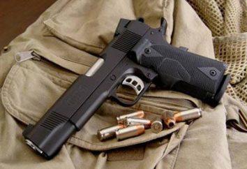O que é uma arma de serviço? arma de serviço: usar e características de desgaste