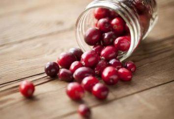 Cranberries in chiaro di luna: soprattutto cucina, le migliori ricette e recensioni