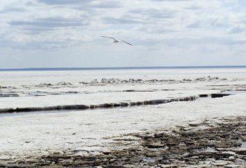 Karelia, Chupa: walka i natura