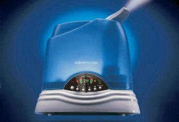Luftreinigung. Die Wahl einer Feuchtigkeitscreme für das Haus